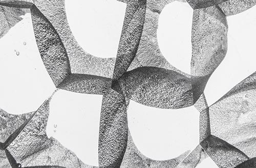 Plurality of Identity Zdenek Lhotsky